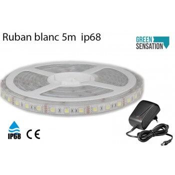 Ruban à LED étanche Blanc Chaud 5 mètres 12v IP68 avec Transformateur
