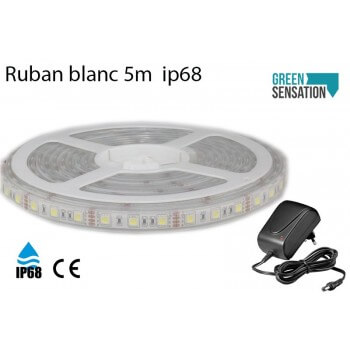 Ruban à LED Blanc Chaud 5 mètres + Transformateur 12v  IP68 SMD5050
