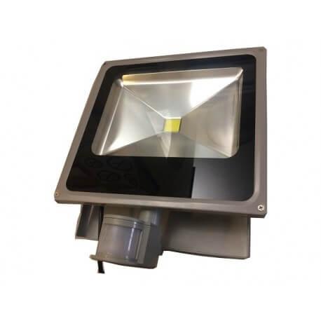 Projecteur LED Avec Détecteur Et Faisceau Grand Angle AC 50W