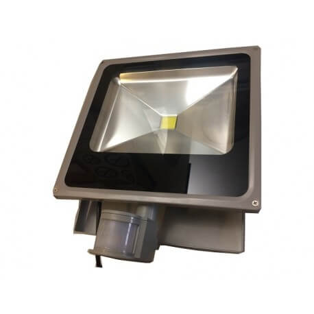 With detector AC 50W LED spotlight