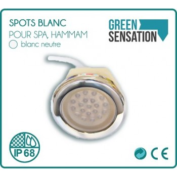 Spot LED bianco impermeabile incorporato 2 W