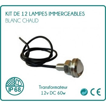 Kit of 12 white submergeable spots hot + transformer 12v DC 60w