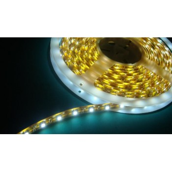 White hot 5 m IP68 waterproof and submersible LED tape